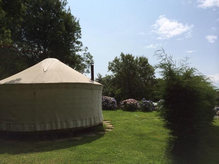 Nare Yurt